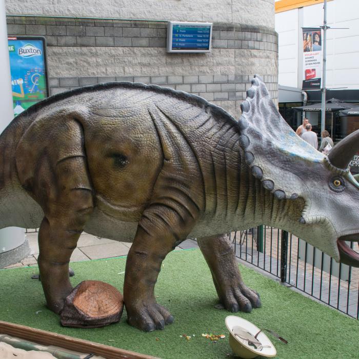 Dinosaurs Visit Tower Park Tower Park