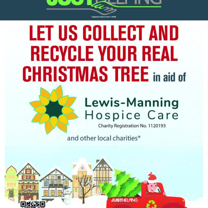 Lewis-Manning Hospice Care Christmas Tree Collection